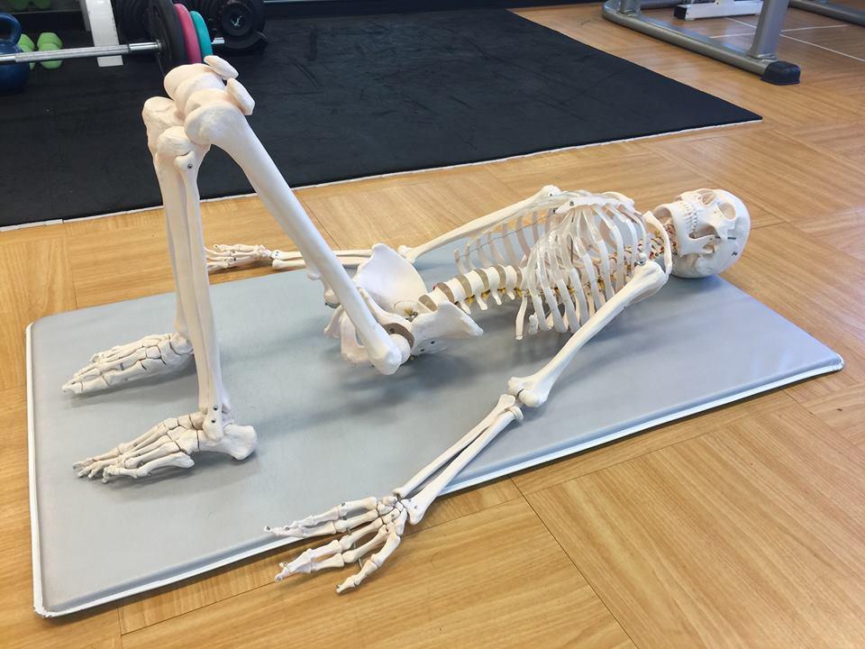 骨を感じる。骨を動かす。