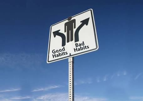 結局、習慣が身体をつくってるんですよね。