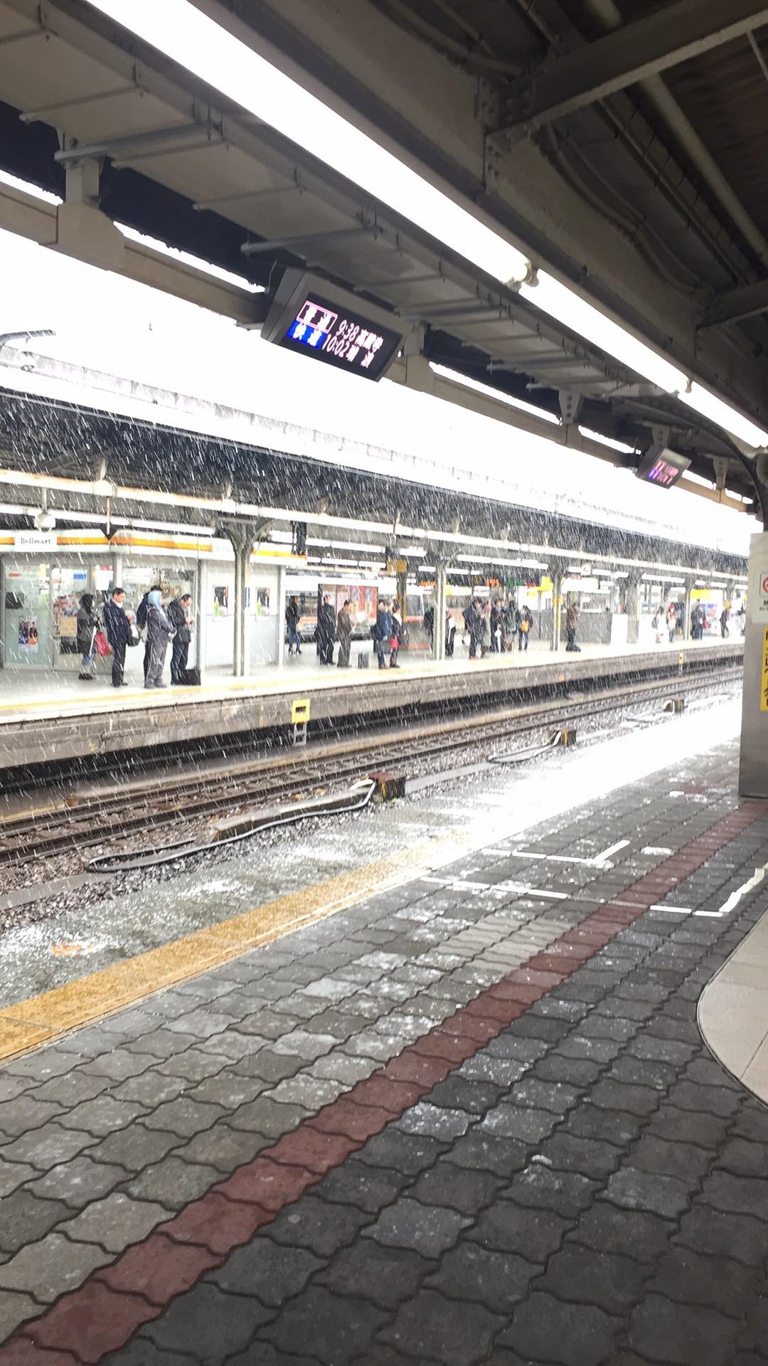 名古屋 雪
