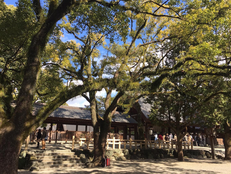 熱田神宮で感じた太陽と木の力。
