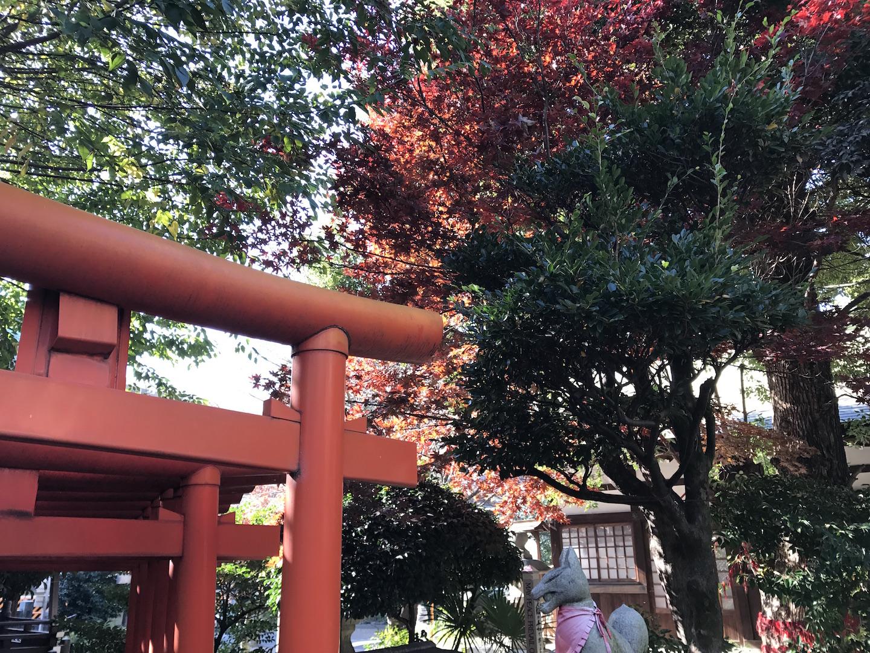 【愛知神社巡り】出掛け先では神社に必ず立ち寄る。